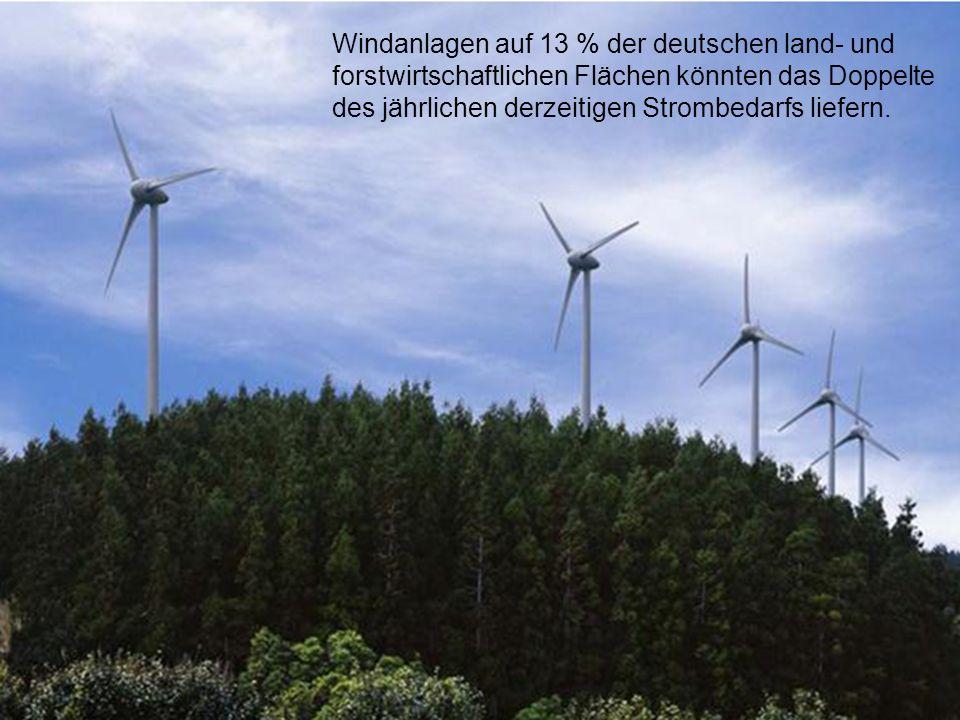 100 Windanlagen auf 13 % der deutschen land- und forstwirtschaftlichen Flächen könnten das Doppelte des jährlichen derzeitigen Strombedarfs liefern.