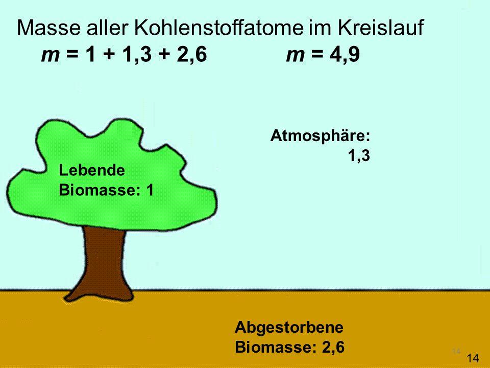 14 Masse aller Kohlenstoffatome im Kreislauf m = 1 + 1,3 + 2,6 m = 4,9 Lebende Biomasse: 1 Abgestorbene Biomasse: 2,6 Atmosphäre: 1,3 14