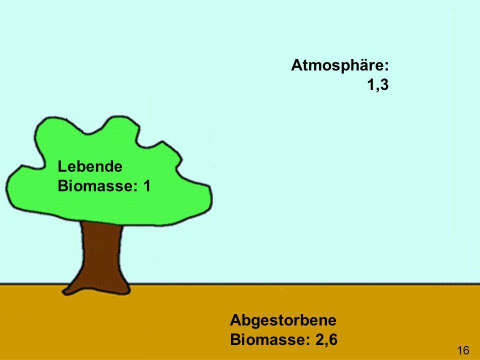 Lebende Biomasse: 1 Abgestorbene Biomasse: 2,6 Atmosphäre: 1,3 16