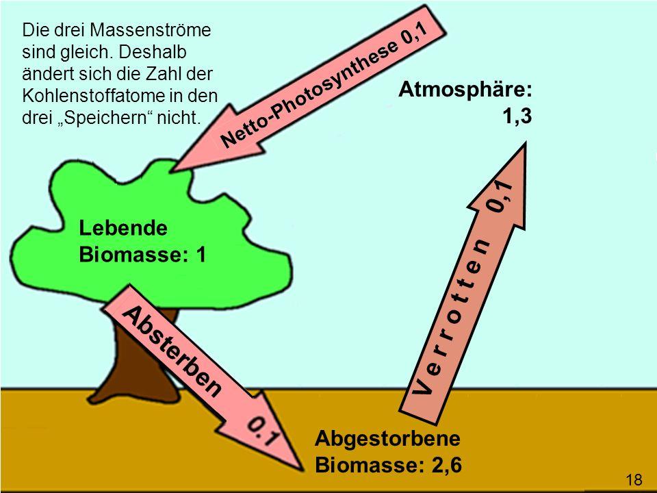 V e r r o t t e n 0,1 Die drei Massenströme sind gleich. Deshalb ändert sich die Zahl der Kohlenstoffatome in den drei Speichern nicht. Lebende Biomas