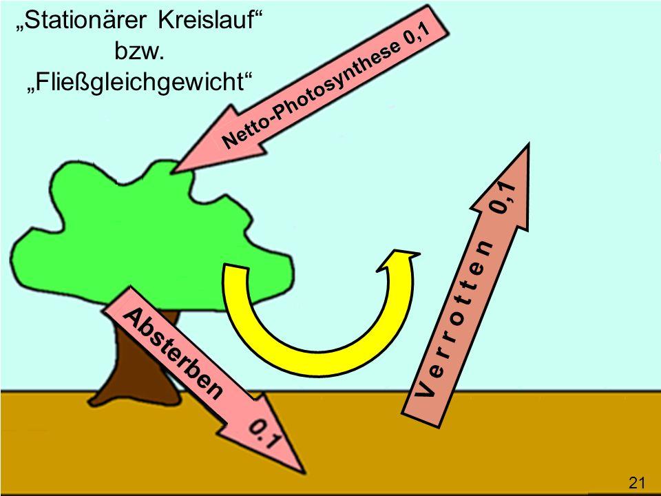 V e r r o t t e n 0,1 Stationärer Kreislauf bzw. Fließgleichgewicht 21