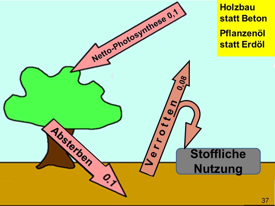 Stoffliche Nutzung V e r r o t t e n 0,08 Holzbau statt Beton Pflanzenöl statt Erdöl 37