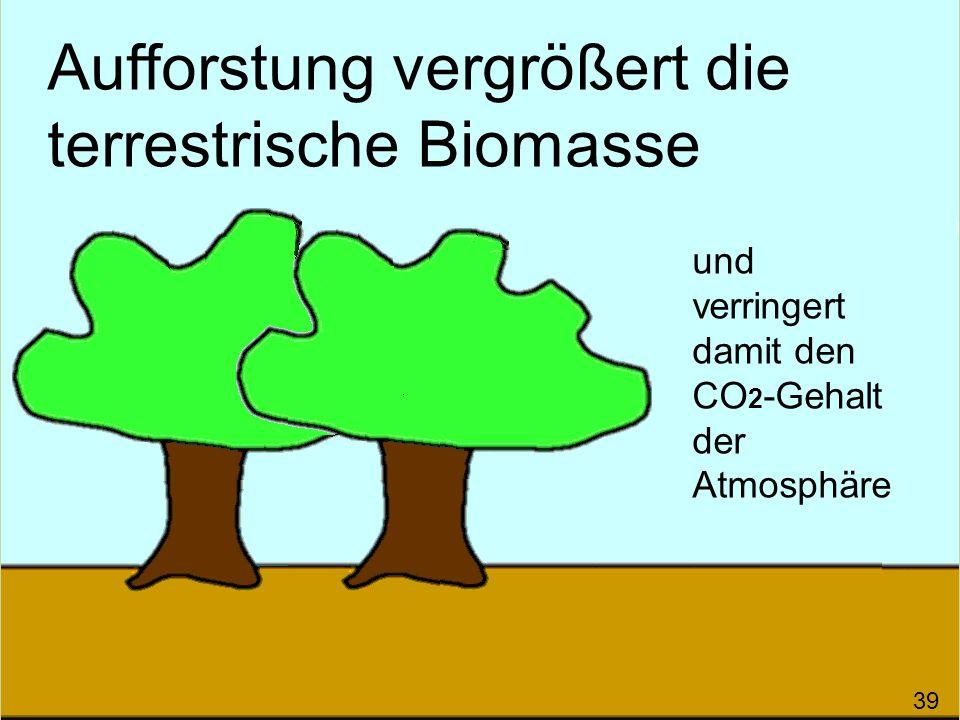 Aufforstung vergrößert die terrestrische Biomasse und verringert damit den CO 2 -Gehalt der Atmosphäre 39