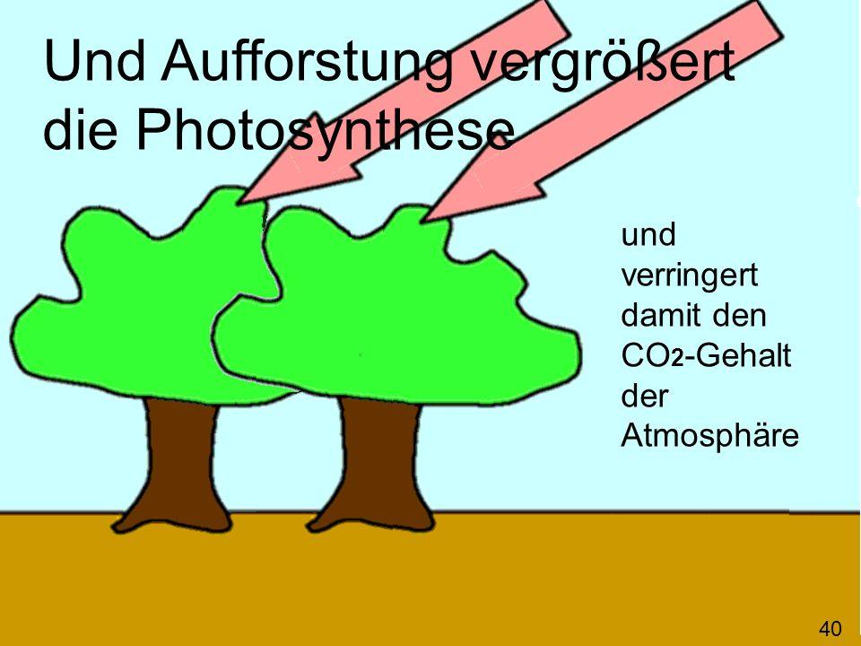 Und Aufforstung vergrößert die Photosynthese und verringert damit den CO 2 -Gehalt der Atmosphäre 40
