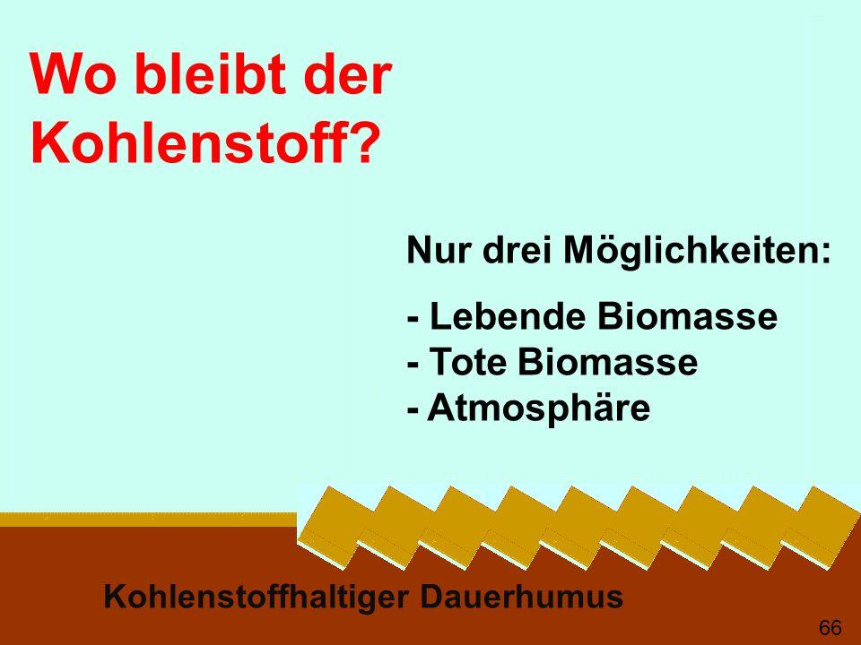 Kohlenstoffhaltiger Dauerhumus 66 Wo bleibt der Kohlenstoff? Nur drei Möglichkeiten: - Lebende Biomasse - Tote Biomasse - Atmosphäre