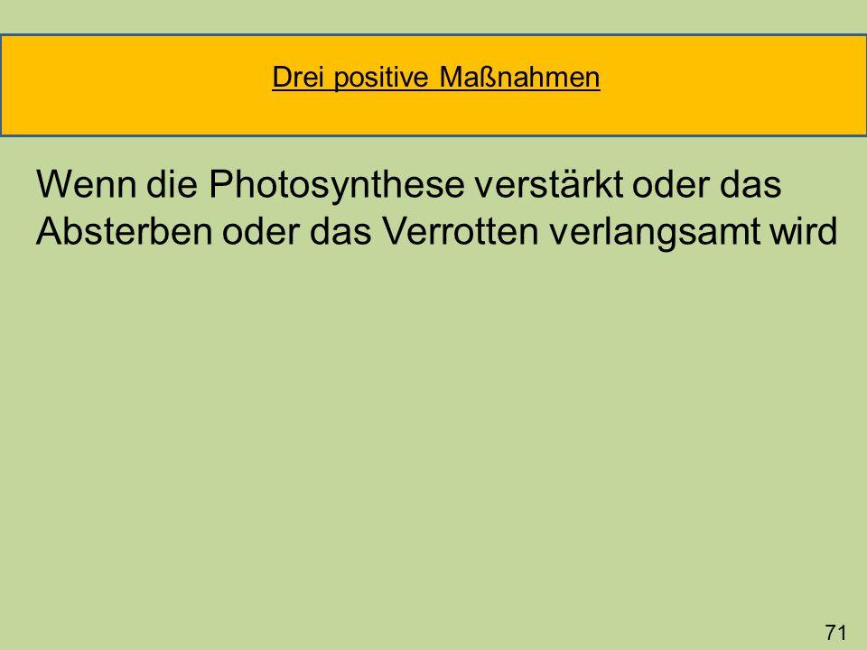 Wenn die Photosynthese verstärkt oder das Absterben oder das Verrotten verlangsamt wird 71 Drei positive Maßnahmen