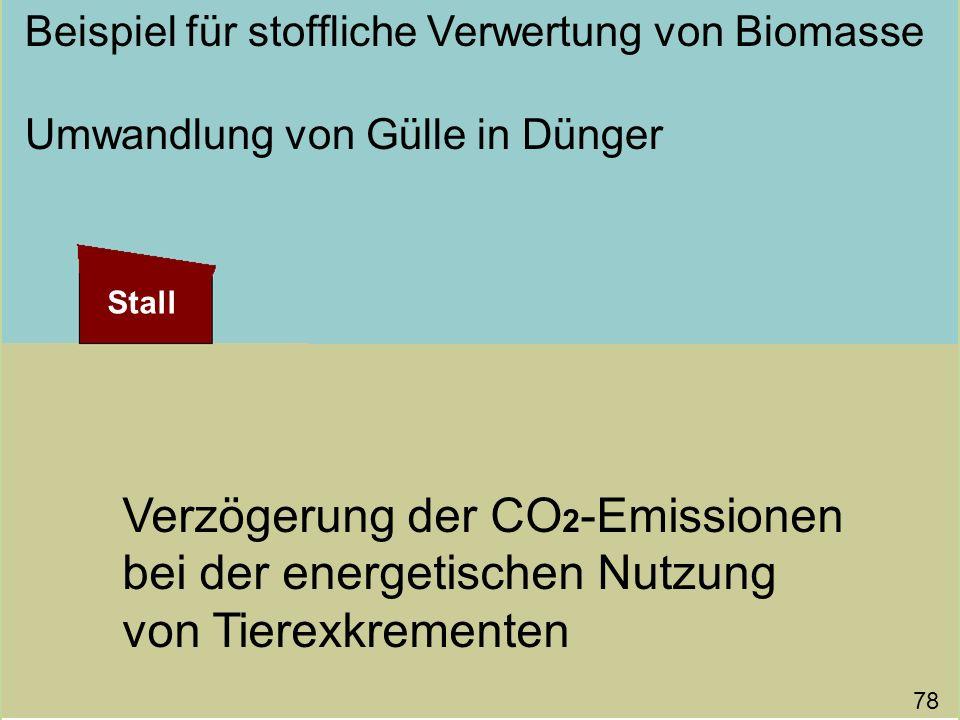 Verzögerung der CO 2 -Emissionen bei der energetischen Nutzung von Tierexkrementen Beispiel für stoffliche Verwertung von Biomasse Umwandlung von Güll