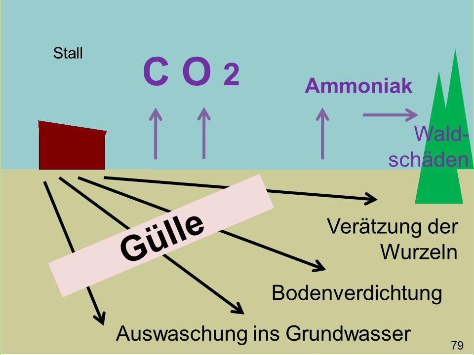 Gülle C O 2 Stall Bodenverdichtung Auswaschung ins Grundwasser Verätzung der Wurzeln Ammoniak 79 Wald- schäden