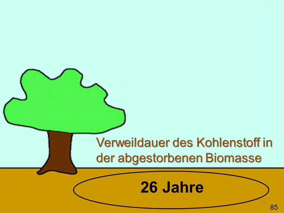 85 Verweildauer des Kohlenstoff in der abgestorbenen Biomasse 85 26 Jahre