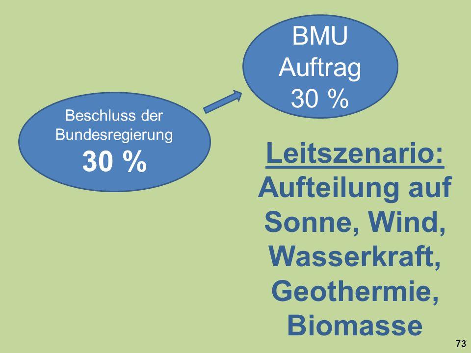 Beschluss der Bundesregierung 30 % BMU Auftrag 30 % Leitszenario: Aufteilung auf Sonne, Wind, Wasserkraft, Geothermie, Biomasse 73