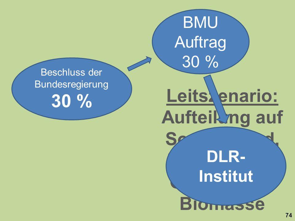 Leitszenario: Aufteilung auf Sonne, Wind, Wasserkraft, Geothermie, Biomasse Beschluss der Bundesregierung 30 % BMU Auftrag 30 % 74 DLR- Institut