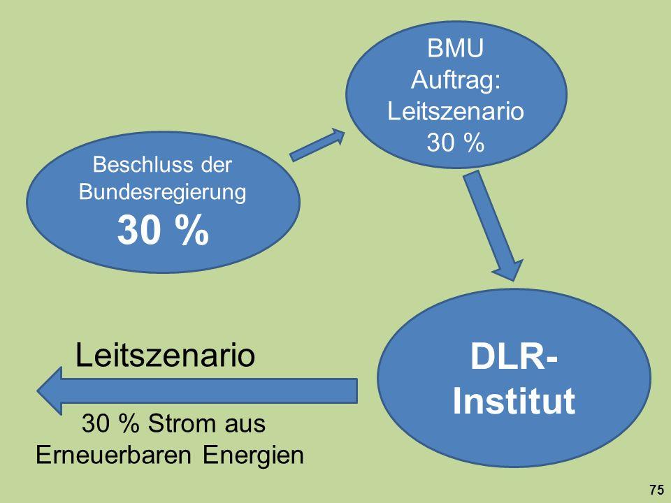 Beschluss der Bundesregierung 30 % BMU Auftrag: Leitszenario 30 % DLR- Institut Leitszenario 30 % Strom aus Erneuerbaren Energien 75