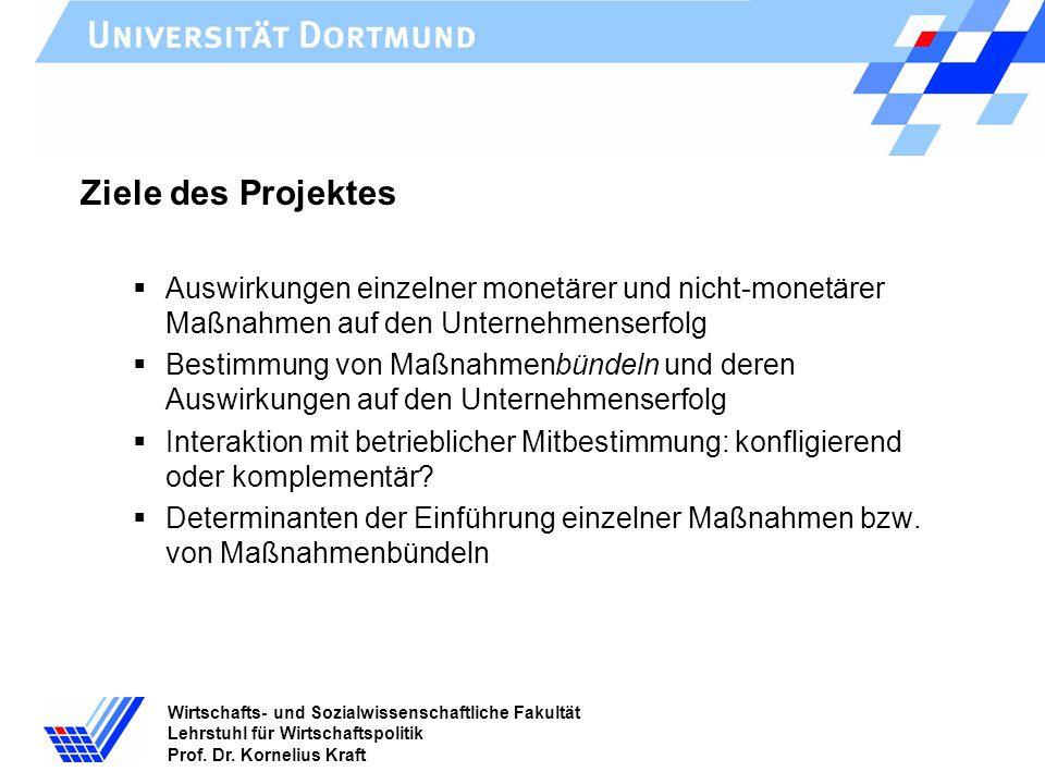 Wirtschafts- und Sozialwissenschaftliche Fakultät Lehrstuhl für Wirtschaftspolitik Prof. Dr. Kornelius Kraft Ziele des Projektes Auswirkungen einzelne