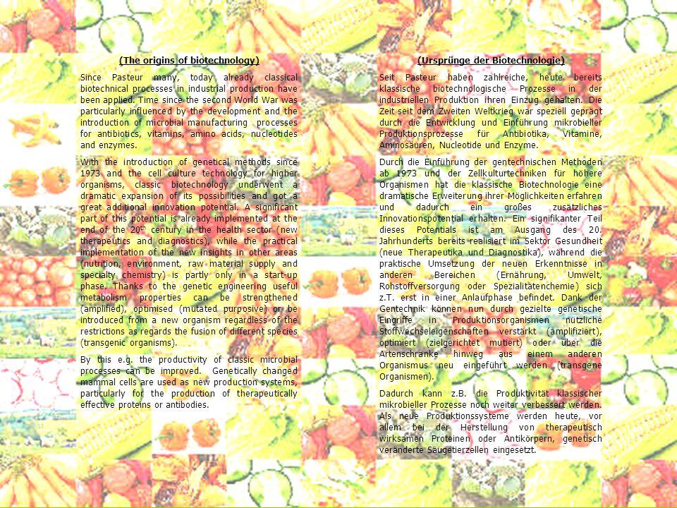(The origins of biotechnology) Transgenic plants, e.g.