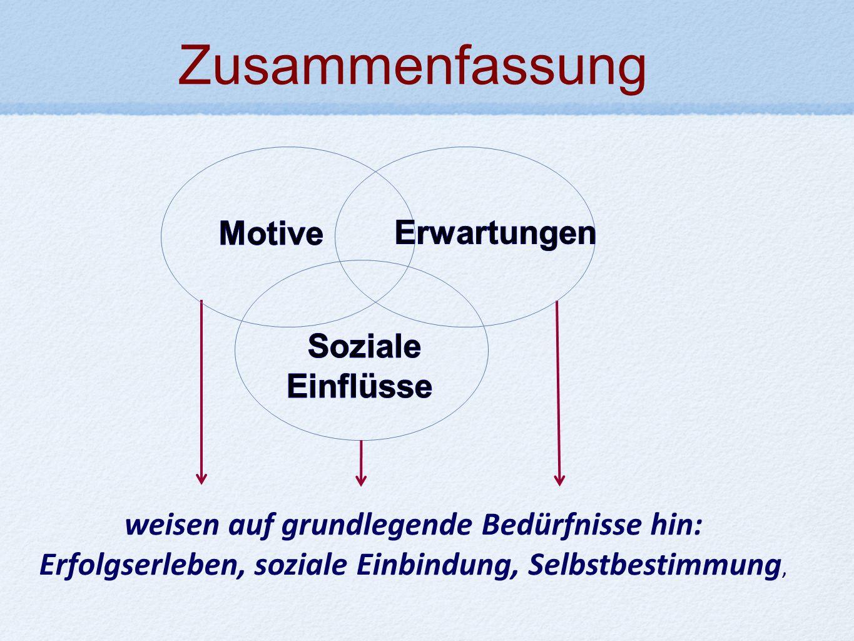 weisen auf grundlegende Bedürfnisse hin: Erfolgserleben, soziale Einbindung, Selbstbestimmung, Zusammenfassung