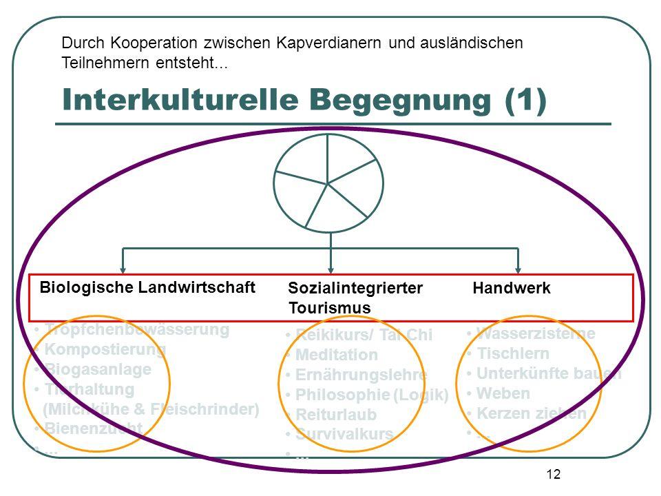 12 Interkulturelle Begegnung (1) Biologische Landwirtschaft Sozialintegrierter Tourismus Handwerk Tröpfchenbewässerung Kompostierung Biogasanlage Tier