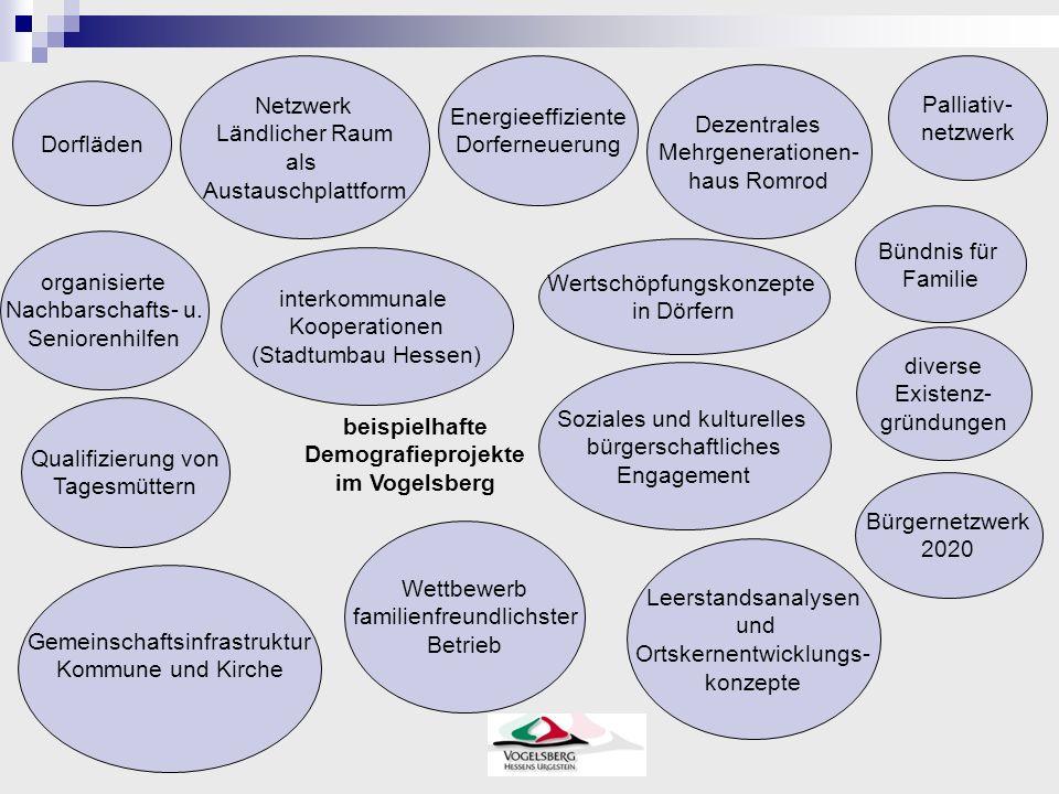 beispielhafte Demografieprojekte im Vogelsberg Netzwerk Ländlicher Raum als Austauschplattform Energieeffiziente Dorferneuerung Dezentrales Mehrgenera