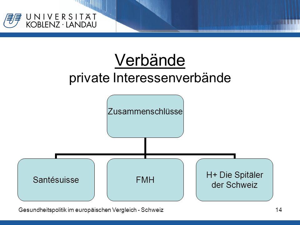 Gesundheitspolitik im europäischen Vergleich - Schweiz14 Verbände private Interessenverbände Zusammenschlüsse SantésuisseFMH H+ Die Spitäler der Schwe