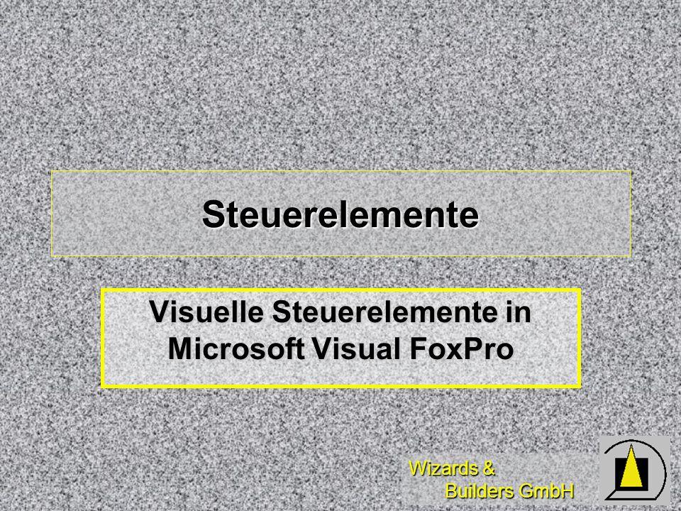 Wizards & Builders GmbH Steuerelemente Visuelle Steuerelemente in Microsoft Visual FoxPro