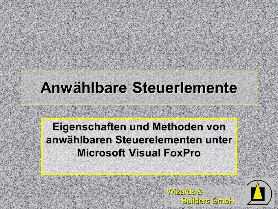 Wizards & Builders GmbH Anwählbare Steuerlemente Eigenschaften und Methoden von anwählbaren Steuerelementen unter Microsoft Visual FoxPro