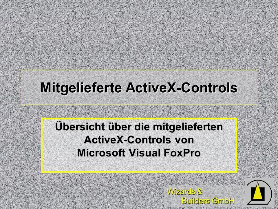 Wizards & Builders GmbH Mitgelieferte ActiveX-Controls Übersicht über die mitgelieferten ActiveX-Controls von Microsoft Visual FoxPro