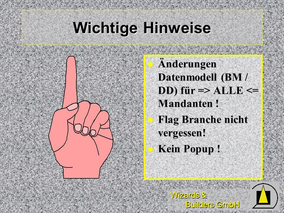 Wizards & Builders GmbH Wichtige Hinweise Änderungen Datenmodell (BM / DD) für => ALLE ALLE <= Mandanten ! Flag Branche nicht vergessen! Flag Branche