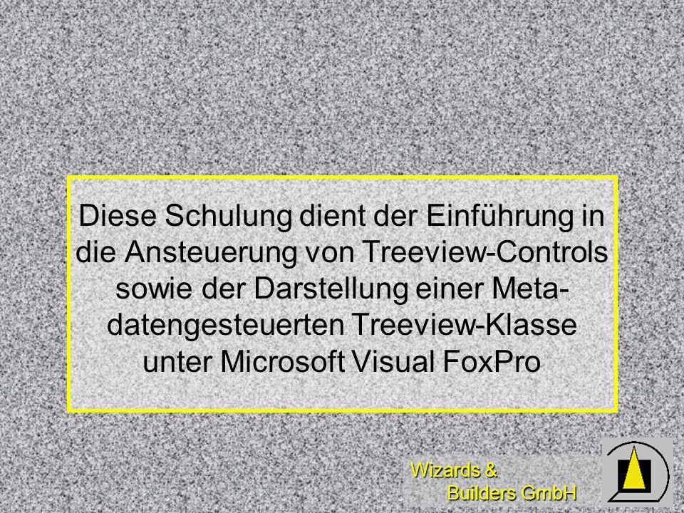 Wizards & Builders GmbH Diese Schulung dient der Einführung in die Ansteuerung von Treeview-Controls sowie der Darstellung einer Meta- datengesteuerte