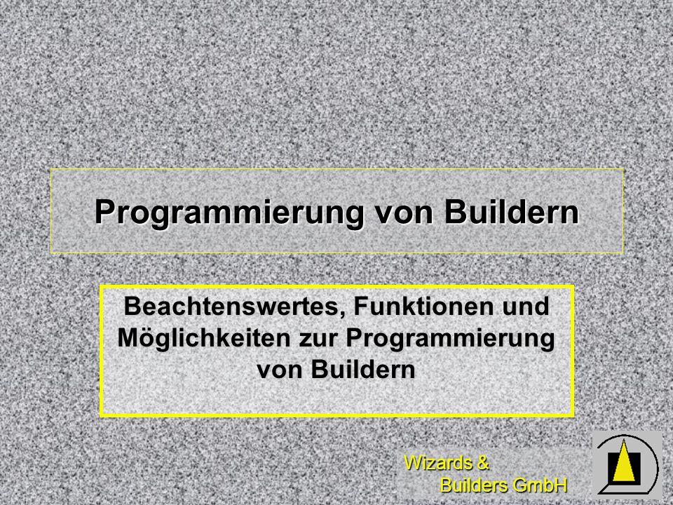 Wizards & Builders GmbH Programmierung von Buildern Beachtenswertes, Funktionen und Möglichkeiten zur Programmierung von Buildern