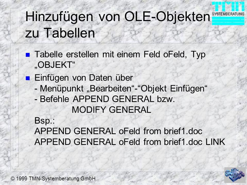 © 1999 TMN-Systemberatung GmbH Hinzufügen von OLE-Objekten zu Tabellen n Tabelle erstellen mit einem Feld oFeld, Typ OBJEKT n Einfügen von Daten über