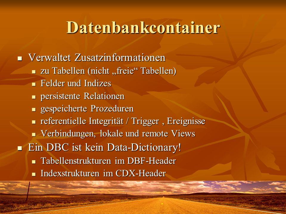 Datenbankcontainer Verwaltet Zusatzinformationen Verwaltet Zusatzinformationen zu Tabellen (nicht freie Tabellen) zu Tabellen (nicht freie Tabellen) F