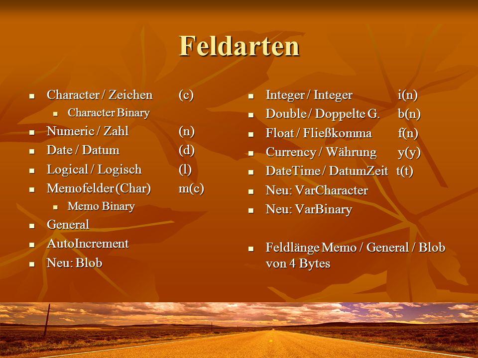 Feldarten Character / Zeichen (c) Character / Zeichen (c) Character Binary Character Binary Numeric / Zahl (n) Numeric / Zahl (n) Date / Datum (d) Dat
