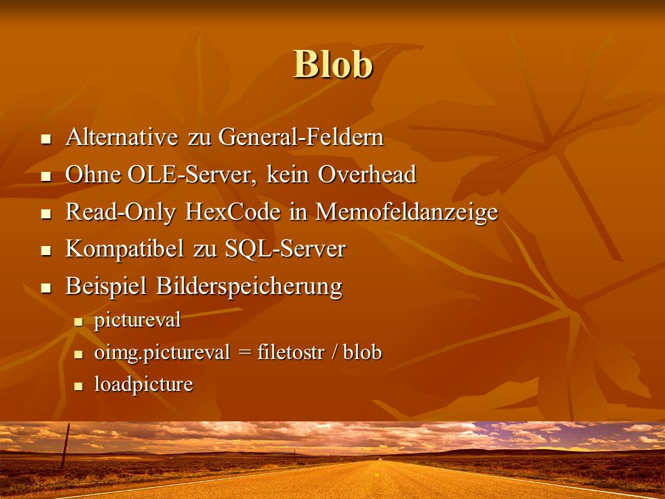 Blob Alternative zu General-Feldern Alternative zu General-Feldern Ohne OLE-Server, kein Overhead Ohne OLE-Server, kein Overhead Read-Only HexCode in