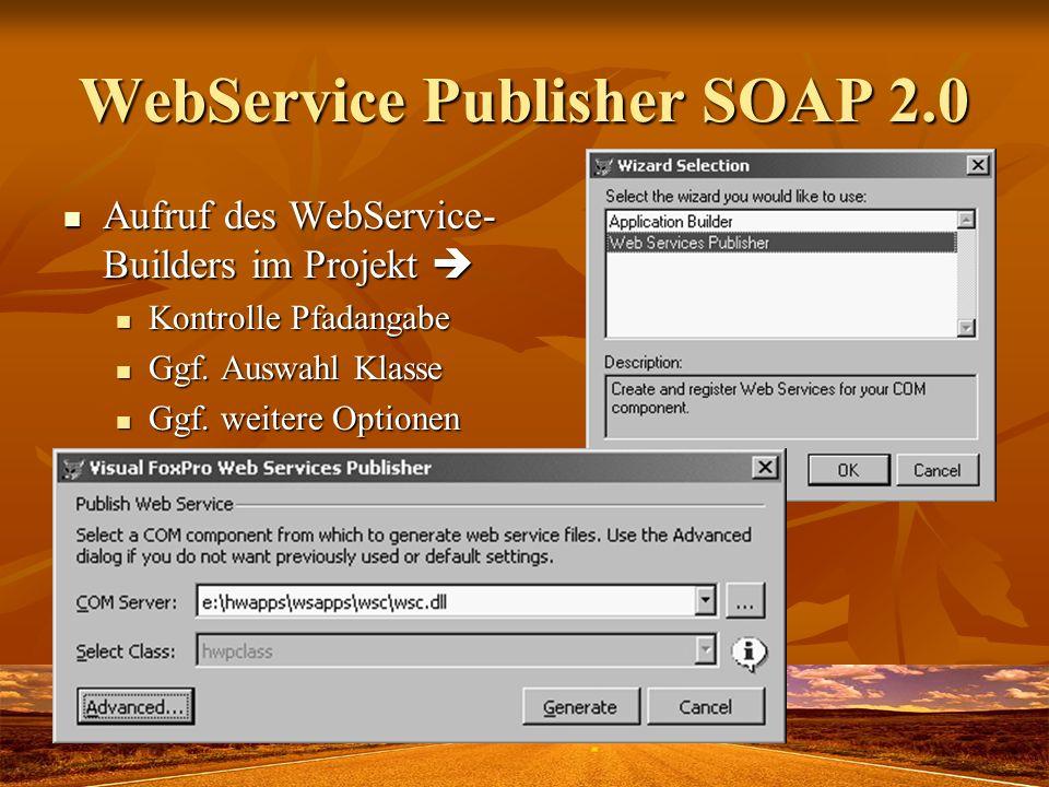 WebService Publisher SOAP 2.0 Aufruf des WebService- Builders im Projekt Aufruf des WebService- Builders im Projekt Kontrolle Pfadangabe Kontrolle Pfa