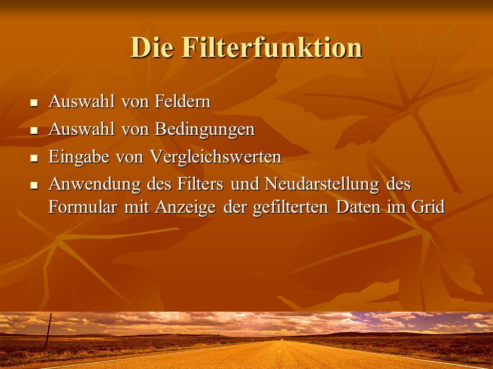 Die Filterfunktion Auswahl von Feldern Auswahl von Feldern Auswahl von Bedingungen Auswahl von Bedingungen Eingabe von Vergleichswerten Eingabe von Ve