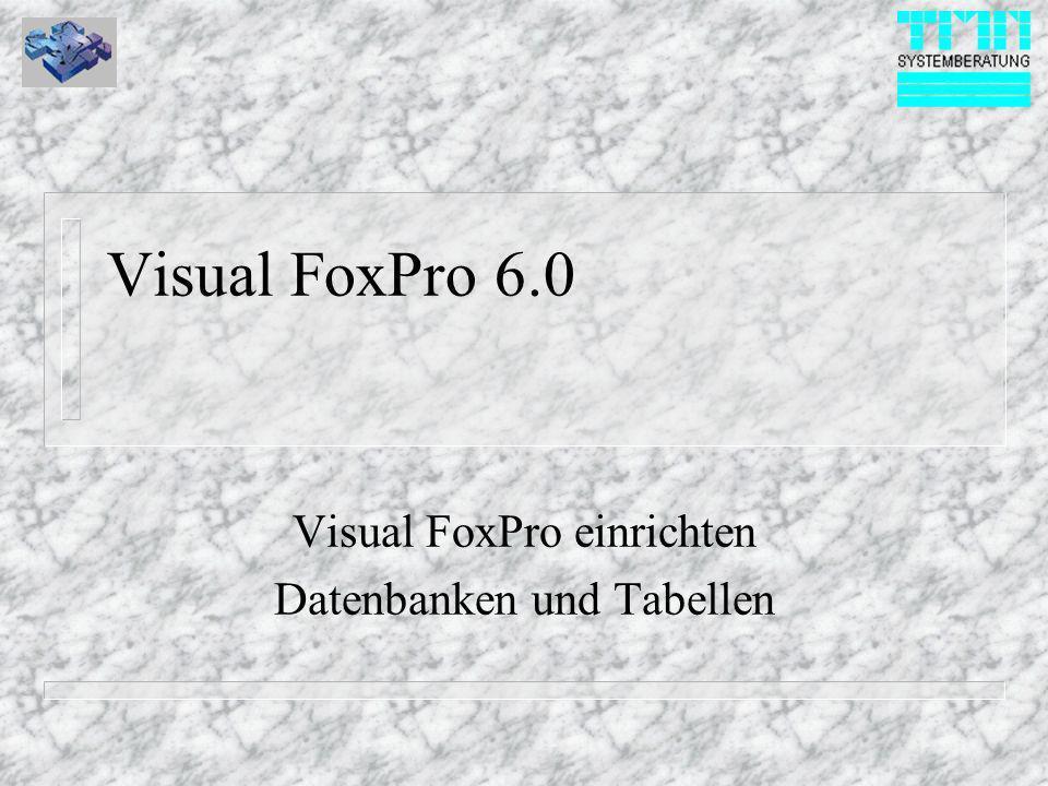 Visual FoxPro 6.0 Visual FoxPro einrichten Datenbanken und Tabellen