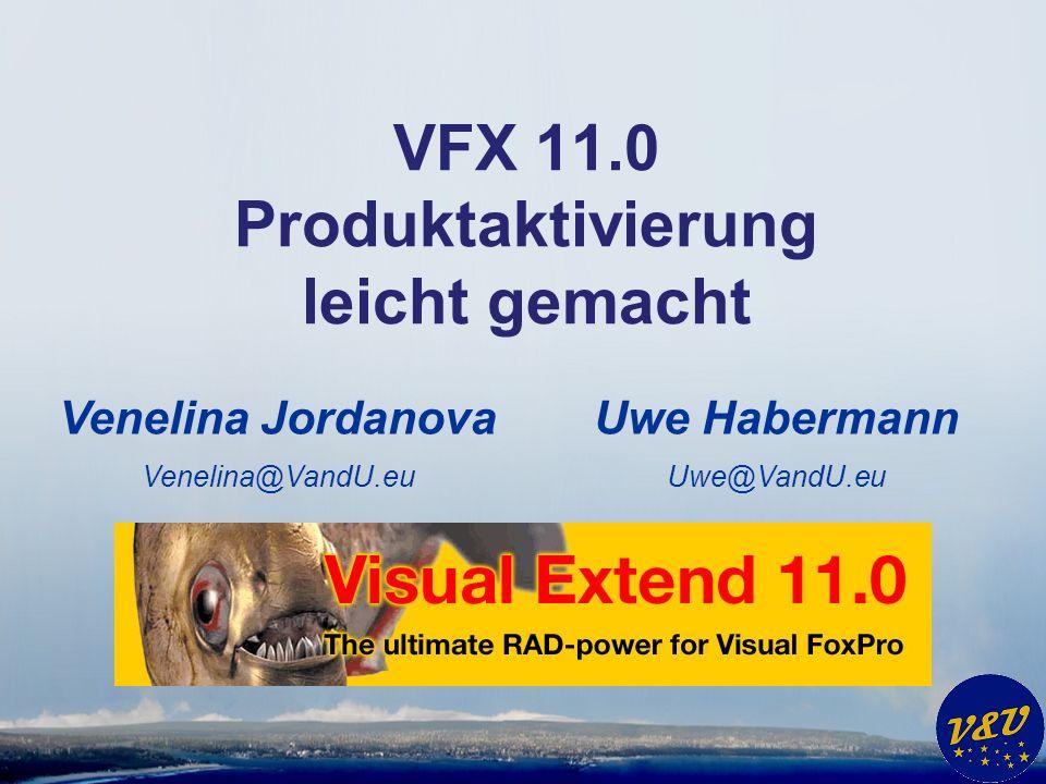 Einstellungen im VFX – Application Builder * Store activation data to cVFXActivation.cStoreActivationData = Name.ini