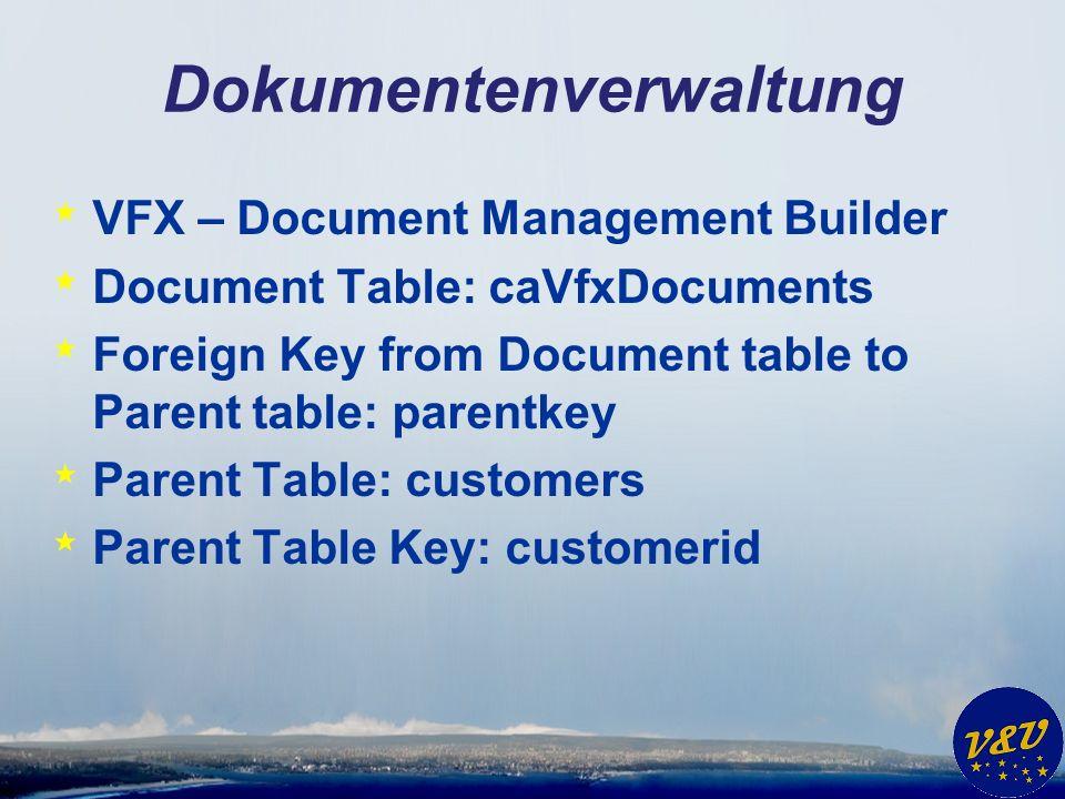 Dokumentenverwaltung * VFX – Document Management Builder * Seite Options *wait window CChildGrid::OnPostInsert() is empty.