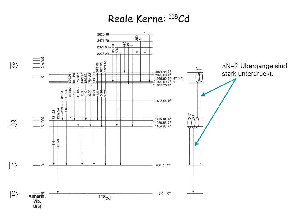 Reale Kerne: 118 Cd |1 |0 |2 |3 N=2 Übergänge sind stark unterdrückt.