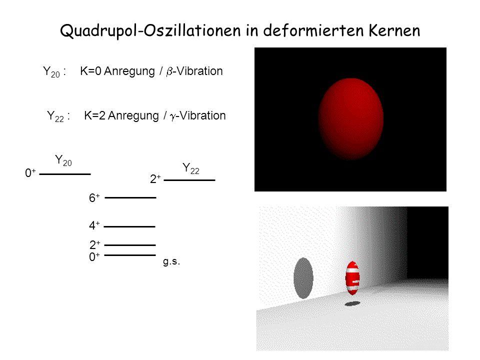 Quadrupol-Oszillationen in deformierten Kernen Y 20 : K=0 Anregung / -Vibration Y 20 0+0+ Y 22 2+2+ Y 22 : K=2 Anregung / -Vibration 0+0+ 2+2+ 4+4+ 6+