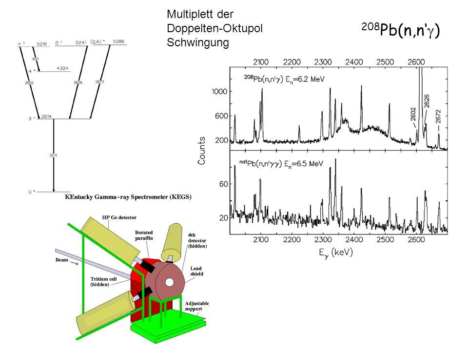 208 Pb(n,n ) Multiplett der Doppelten-Oktupol Schwingung