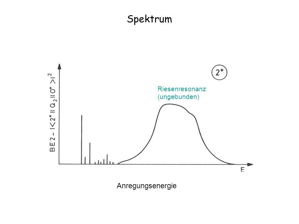 Spektrum Anregungsenergie Diskrete gebundene Zustände Riesenresonanz (ungebunden)
