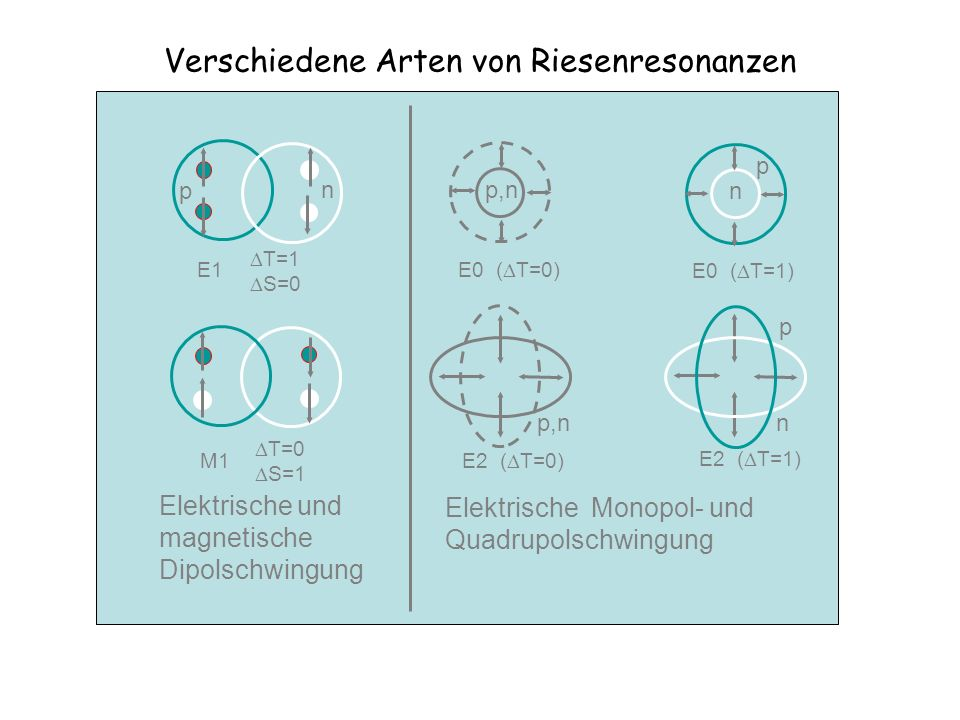 Verschiedene Arten von Riesenresonanzen p,n E0 ( T=0) p n E0 ( T=1) p n E2 ( T=1) p,n E2 ( T=0) n p E1 T=1 S=0 T=0 S=1 M1 Elektrische und magnetische
