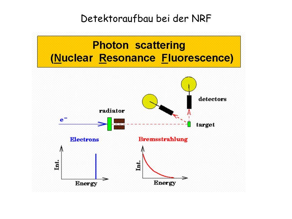 Detektoraufbau bei der NRF