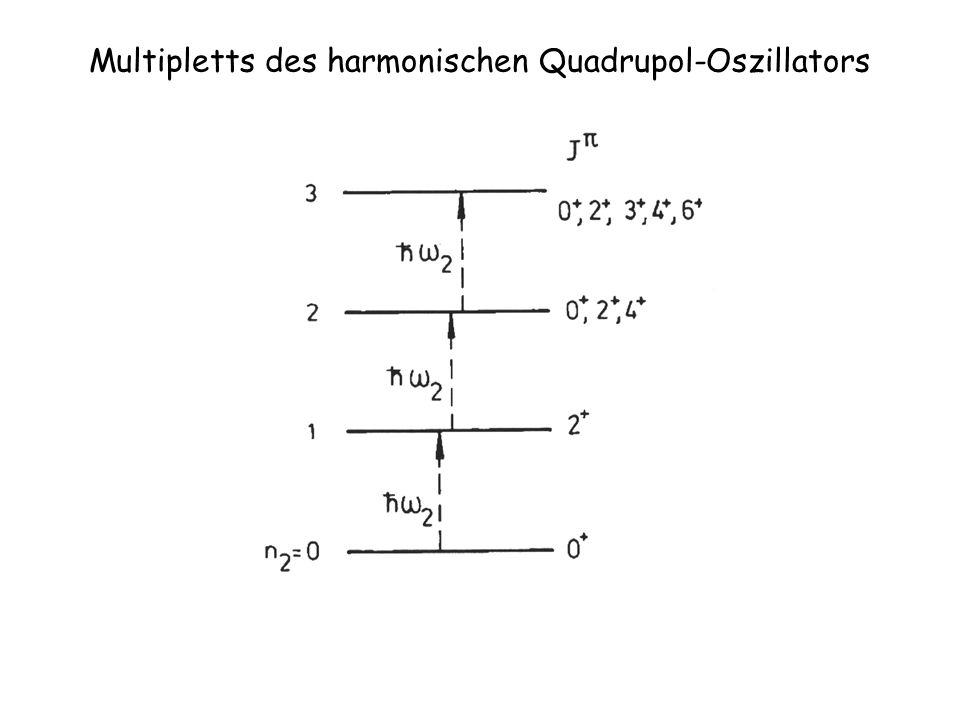 Multi-Phonon Zustände und das Pauli Prinzip 2 d 5/2 s 1/2 d 3/2 h 11/2 g 7/2 50 82 l-1/2 L=2 Annahme: Der 1-Phononen Zustand wird durch Zwei-Teilchen-Loch Anregungen erzeugt Der 2-Phononen Zustand wird durch duplizieren der ersten Anregung erzeugt Ein 3-Phononen Zustand kann nicht mehr durch die selbe Anregung erzeugt werden, da der d 3/2 Zustand nur mit maximal 4 Teilchen besetzt werden kann.