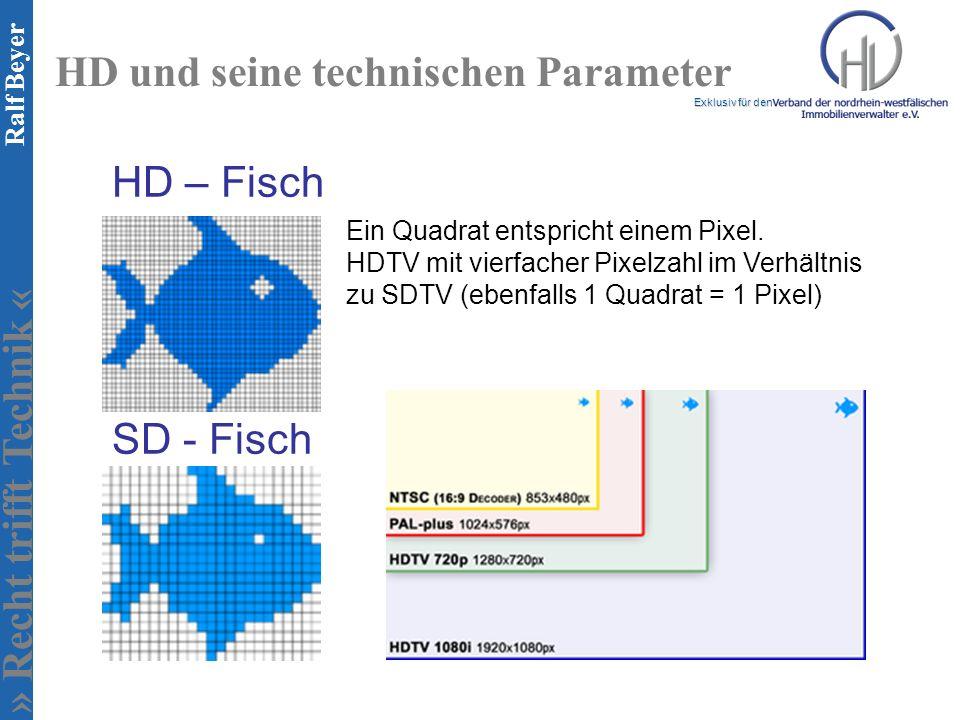 » Recht trifft Technik « Exklusiv für den Ralf Beyer HD und seine technischen Parameter HD – Fisch SD - Fisch Ein Quadrat entspricht einem Pixel. HDTV