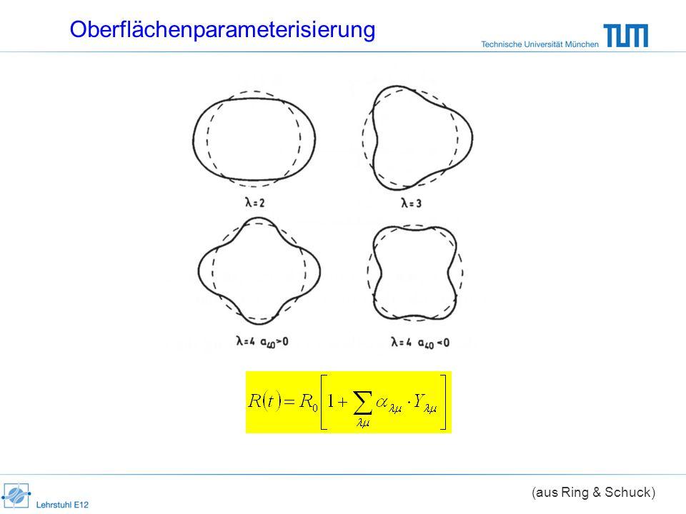 Oberflächenparameterisierung (aus Ring & Schuck)