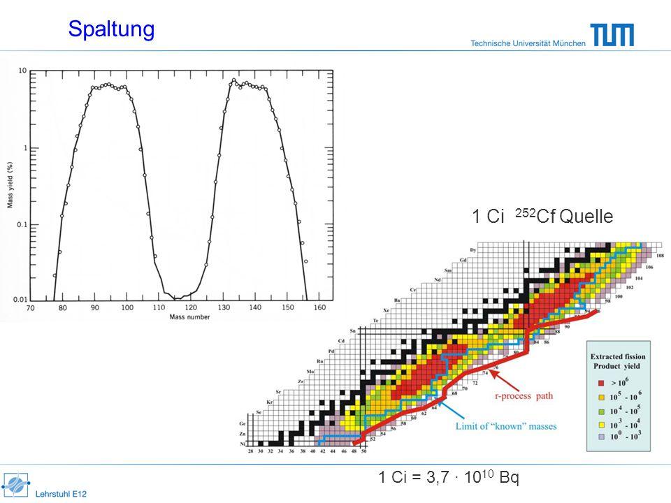Spaltung 1 Ci 252 Cf Quelle 1 Ci = 3,7 · 10 10 Bq