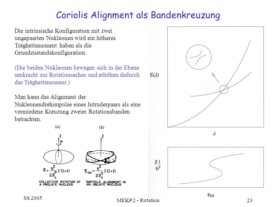 SS 2005 MEKP 2 - Rotation23 Coriolis Alignment als Bandenkreuzung Die intrinsische Konfiguration mit zwei ungepaarten Nukleonen wird ein höheres Trägh