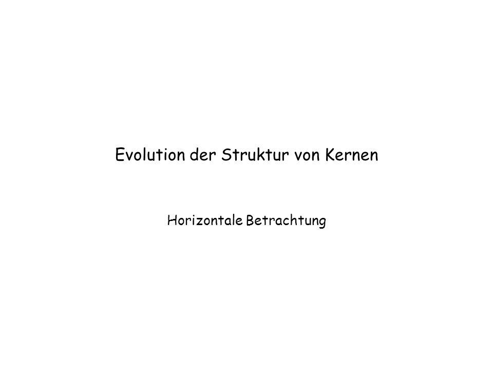 Evolution der Struktur von Kernen Horizontale Betrachtung