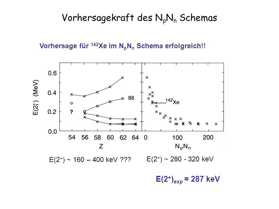 Vorhersagekraft des N p N n Schemas Vorhersage für 142 Xe im N p N n Schema erfolgreich!.